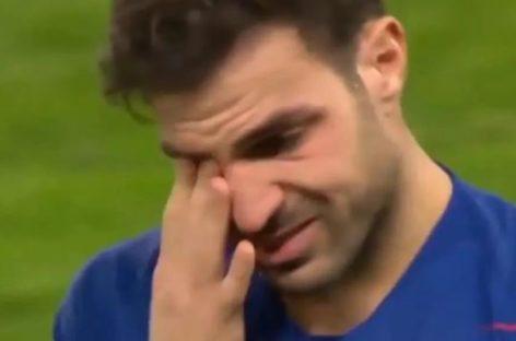 VIDEO | Cesc nije mogao zadržati suze, a ne možemo ni mi
